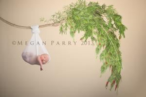 Megan Parry Photography