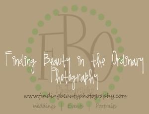 Finding Beauty in the Ordinary Photography