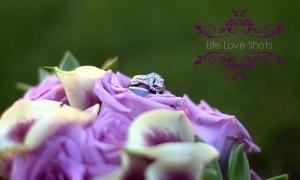 Life Love Shots