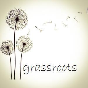 Grassroots LLC