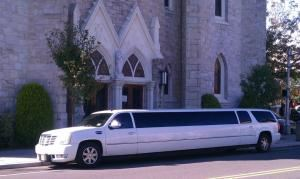 Lily's Limousine