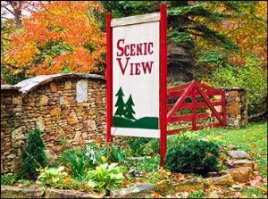 Penn Scenic View