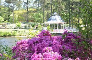 Pavilion In The Park