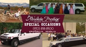 Absolute Prestige Limousines Service, Inc
