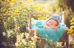 Summerland Photography - Yakima