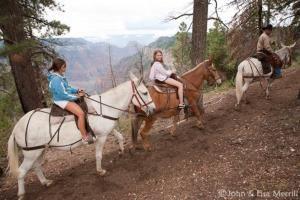 Canyon Rides
