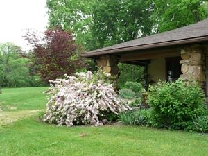 Old Massanutten Lodge