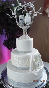 A Beautiful Wedding Cake/All Occasion Cakes