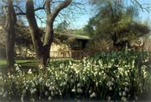 Gardens Conference Room