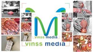Vinss Media