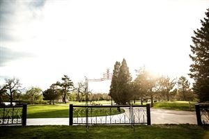 Mt Evans Garden