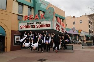 Springs Sounds Entertainment