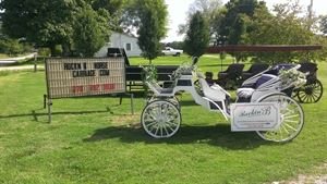 Rockn B Horse Carriage and Farm