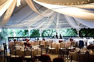 2 Shelter Party Tent Rentals