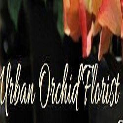 Urban Orchid Florist