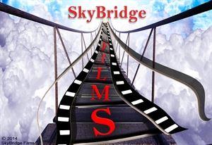 SkyBridge Films