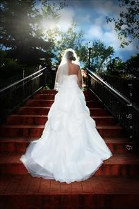 Pro Wedding Shots Photography