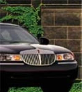 City View Limousine, Inc.