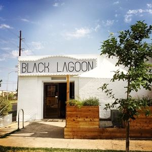 Black Lagoon: Art + Yoga - Central Austin Art Gallery & Event Space