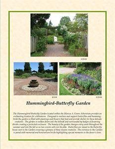 Hummingbird-Butterfly Garden