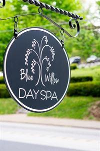 Blue Willow Day viSpa