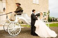Eagle Eye Ranch Carriage Company - Fort Worth