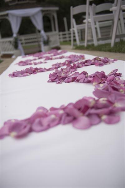 Weddings by Sheila Foster