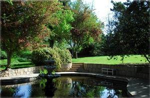 Koi Pond/Lawn