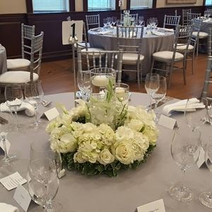 Wild Lillies Events