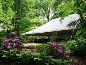 Woodland Glen Reception Tent