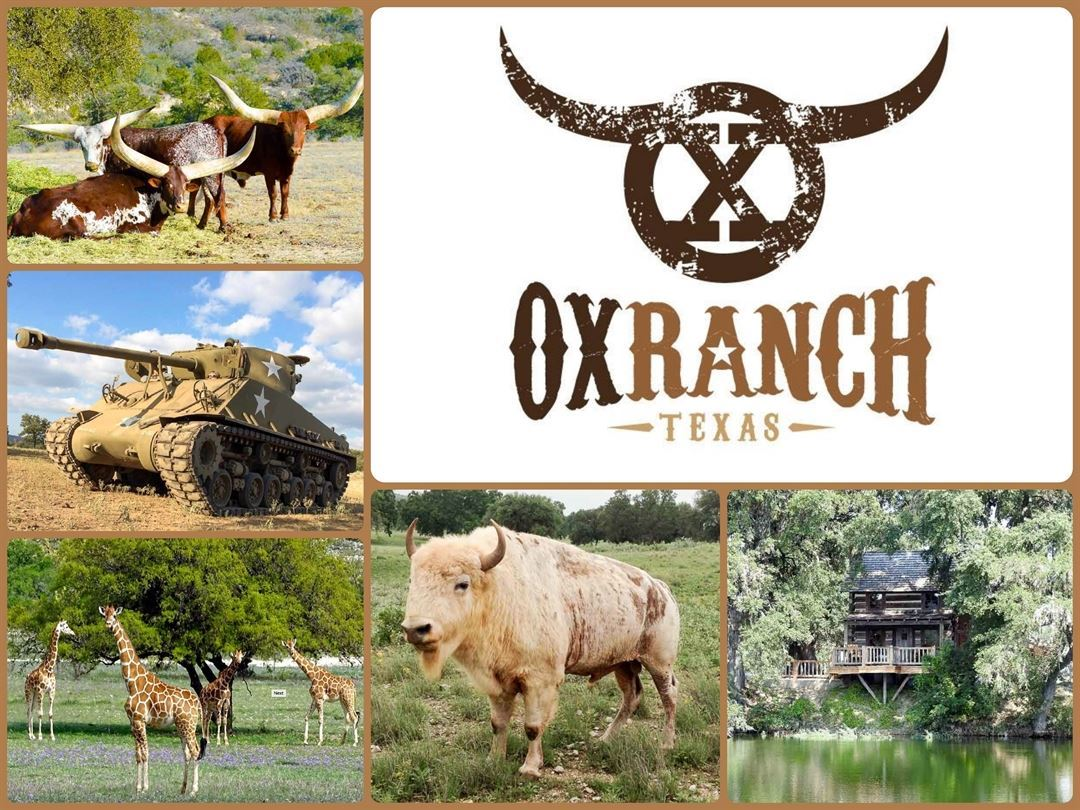 Native & Exotic Hunting | 18,000 Acres in Texas | OX Ranch