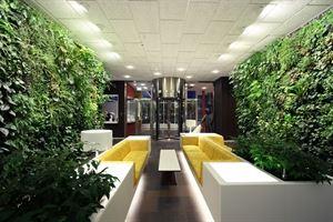 Green Life Designs