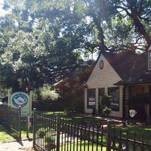 The Tea House Under the Oaks