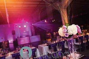 Baccino Events - Planning, Coordination & Design