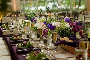 Davis Islands Garden Club