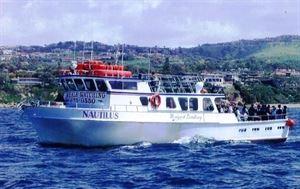 2. Nautilus