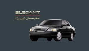 Elegant Town Car Transportation