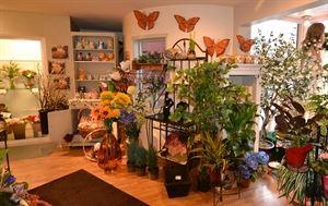 Carls Flower Company - Penticton