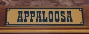 Appaloosa Room