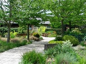 University of Washington Botanic Gardens (Center for Urban Horticulture)