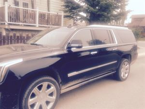 Arrow limousine