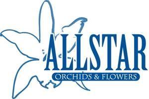 ALLSTAR ORCHIDS & FLOWERS