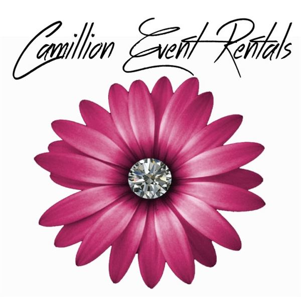 camillion event rentals woodbridge va party equipment rental