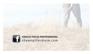 Crocus Focus Photographic