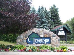 Treetops Resort