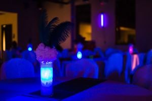 Donna Lavoro Event Planning and Decorating Services