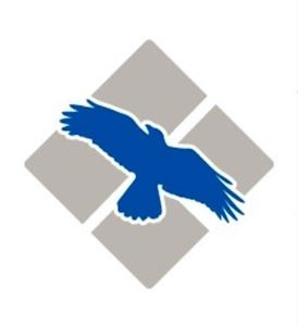Blue Raven Inc