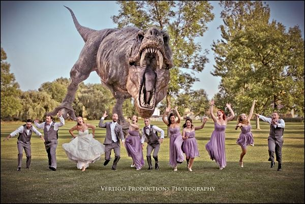 Vertigo Productions Photography