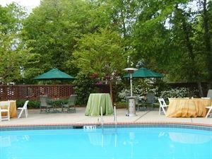 Holly Inn Pool