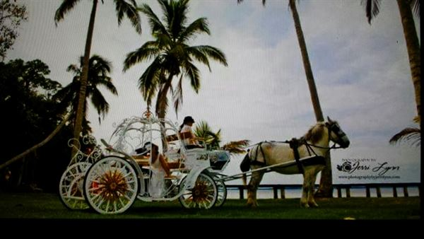 Charlene's Classic Carriages LLC